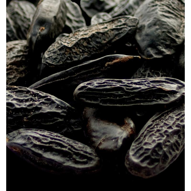 yodeyma tonka bean